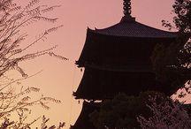 Japon / by German Galindo