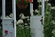 gardening / by Candy Petersen