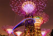 singapore / by allie gilliland
