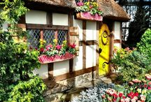 Cozy Cottages / Cottages / by Maria Newell
