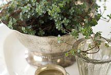 Gardening that I love / gardening / by Annie Hines