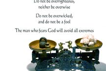 Ecclesiastes  / by Melissa B