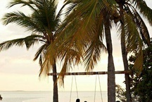 Welcome to the Tropics / by OndadeMar Swimwear