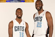 Fantasy Outlooks / by Charlotte Bobcats