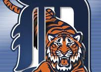 Tigers / by Helen Porter
