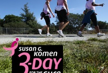 3 day walk for the cure / by Lynn Westby