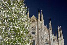 Lovely Christmas in .... / by Ingrid van den Berg