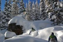 The Greatest Snow On Earth  / powder. powder. powder.  / by Ski Utah
