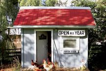 Country Living / Things to do at the new place  / by Adrianna Rodriguez Avila