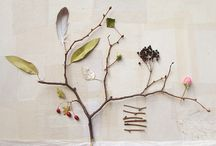 The art of nature / by Dawn Smith Designs