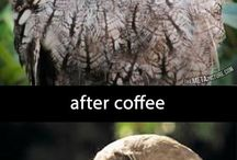 Coffee! / by Sara Webb