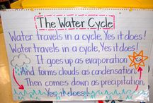 5th grade Science / by Andrea Lechuga
