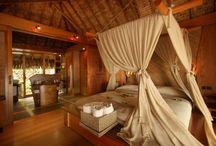 Beautiful Bedrooms / by Debbie Wherry