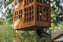 Such great heights  / Treehouses :)  / by Lauren Sprague
