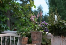 Porch Life / Southern, Relaxing, Enjoy Family / by Heather Cook
