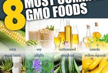 Say NO to GMO!! / by Stacy Calderone