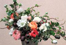 Floral. & botanical / by Jennifer White