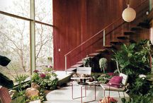 Mid Century Modern / by Emily Dobson