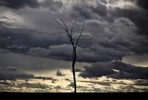 The sky / by Carol Sherer