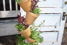 garden ideas / by Tracy Sharp