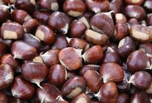 food/chestnuts / food/cooking  with chestnuts and chestnut products / by barbara miller
