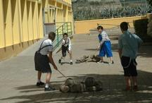 Recursos para Educación Física / Recopilación de recursos para Educación Infantil y Primaria / by ÁNGELES POUSA DÍAZ