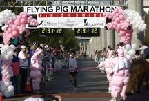 2002 Flying Pig Marathon / by Flying Pig