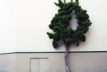 Topiary / by Leontine Greenberg