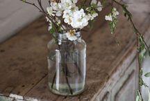 Flowers & végétal / by Sophie Lefebvre