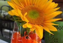 Floral / by Brooke Lyles