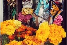Halloween Ideas / Halloween and Dia De Los Muertos / by Andrea Lefebvre-Osborne