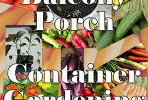 Patio Gardening / by Julie Carlson