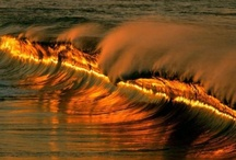 Ocean LOVE / by Charlene Gray