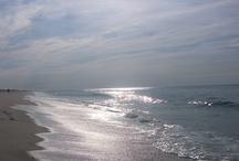 Beach Pics / by Ralphie Winston