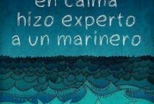 How to catch a dream / Citas / Quotes / by David Gutierrez