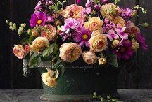 des fleurs / by alanna