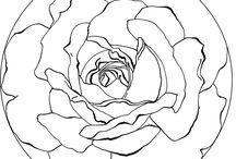 Paint along flower ideas / by Torri Bates Janzen