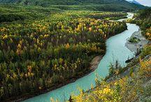 Everything Alaska / by Yarden Sayada