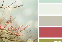 paint colors / by Jean Gordon