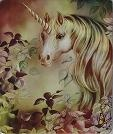 i love unicorns!! / by Ruth Moran