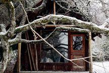 Winter / by Barbara Harding