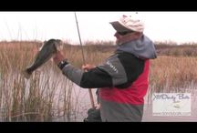 Fishing stuff - Lines, bobbers, and Lies / by Greg Irwin