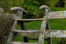 Pretty fences make good neighbors / by Allison Mauser