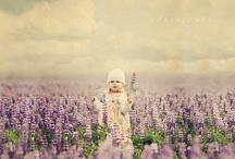Purple / by Sue Nueckel