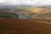 Peak District Blogs / by Visit Peak District