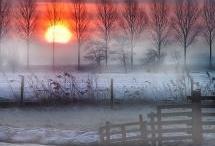 Sunrise, Sunset / by Nancy Kroeker Boothe