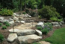 Landscaping / by Christie B