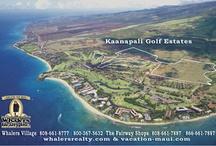 Maui Real Estate / by TriciaMorris MortgageMaui