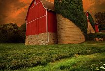 Look!  Look at the Barn! / by Candace Harris
