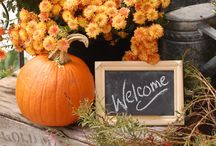 Fall Porch Decor / Inspirational ideas to decorate Your Outdoor Spaces with Pumpkins, Mums, Hay Bales, Wagons, and scarecrows for Autumn.  / by Yvette Palmer | Agave Premier Properties